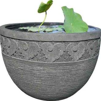 Detailed Water Bowl